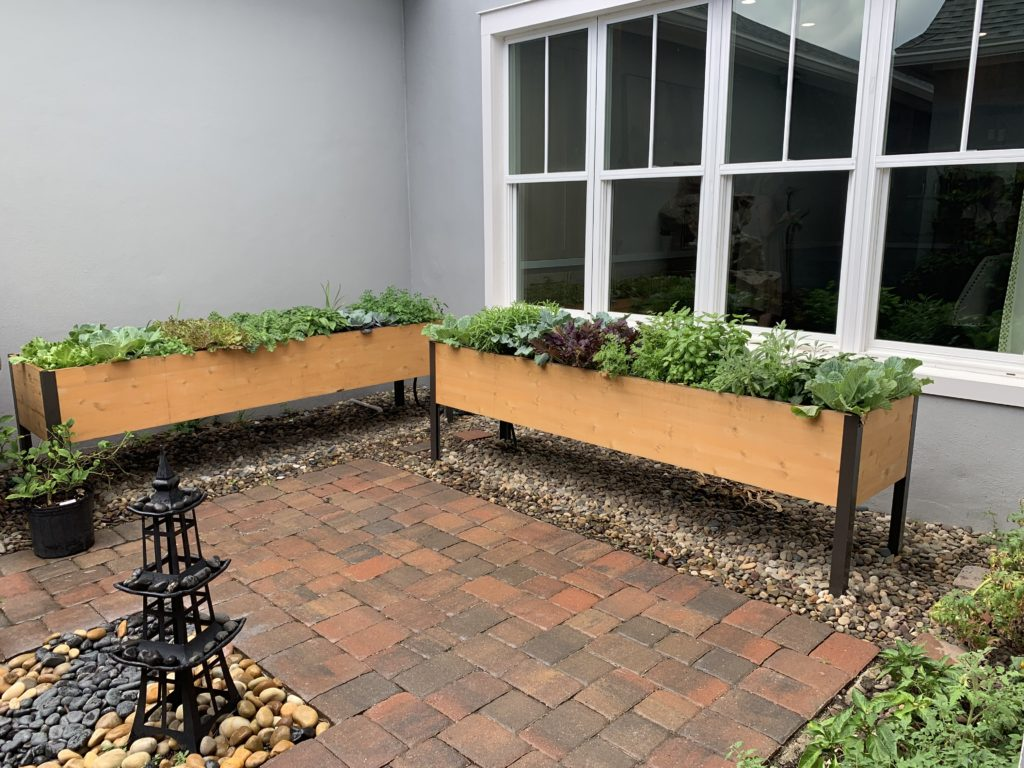 Window garden next to the Wellness Kitchen in WHIT grows herbs and fresh vegetables. Photo Credit: The Design Tourist