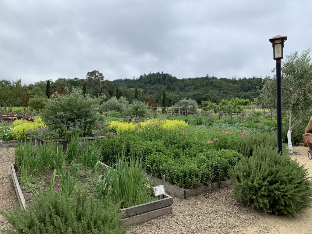 Quivira's organic gardens are open for tours as part of a visit to the vineyard and winery at WineCreek Ranch in Sonoma County.